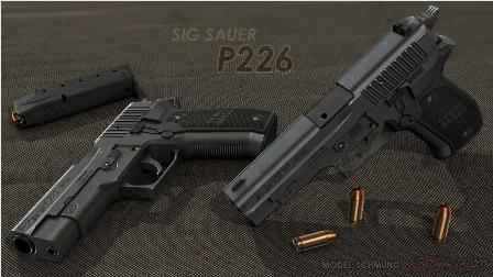 Sig sauer for sig p288